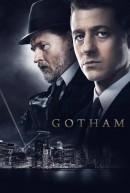 Netflix заранее  приобрел права на показа сериала «Готэм»